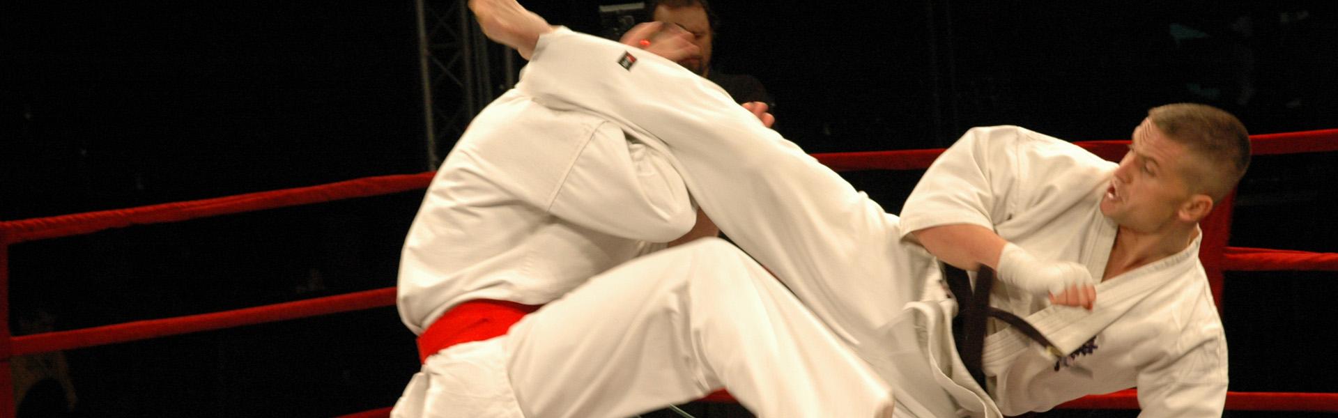 Karate =  sztuka